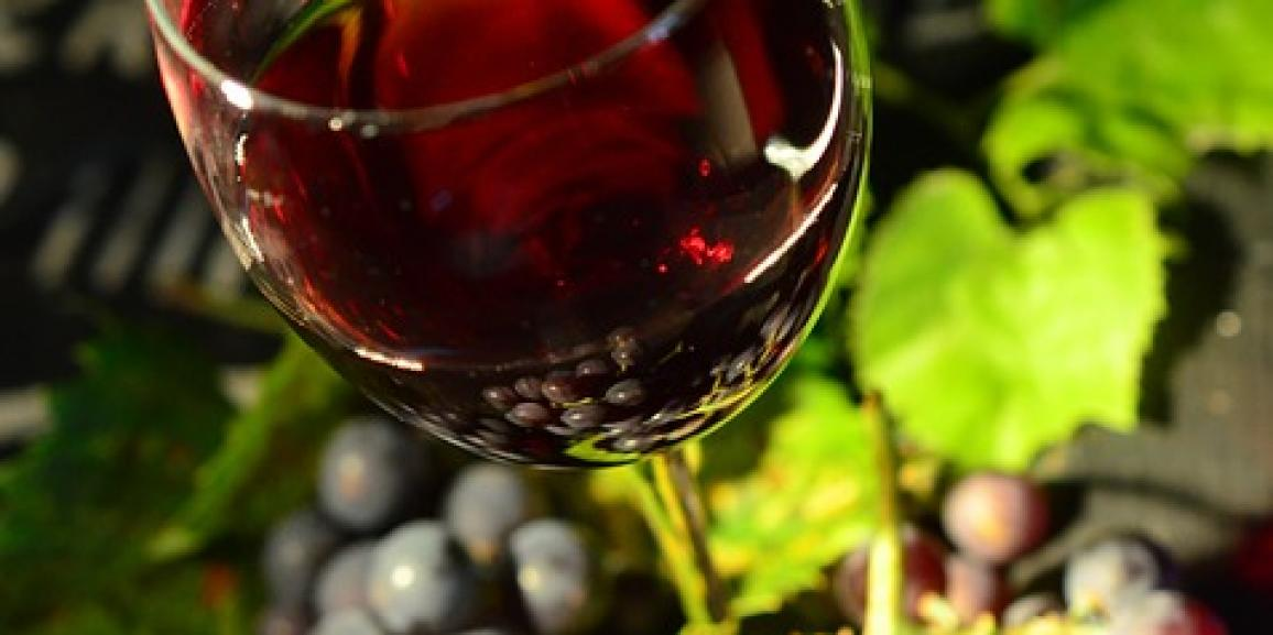 The wine routes