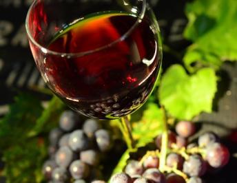 Gli itinerari del vino